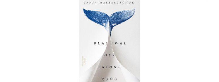 cover rezension blauwal-der-erinnerung 20200707